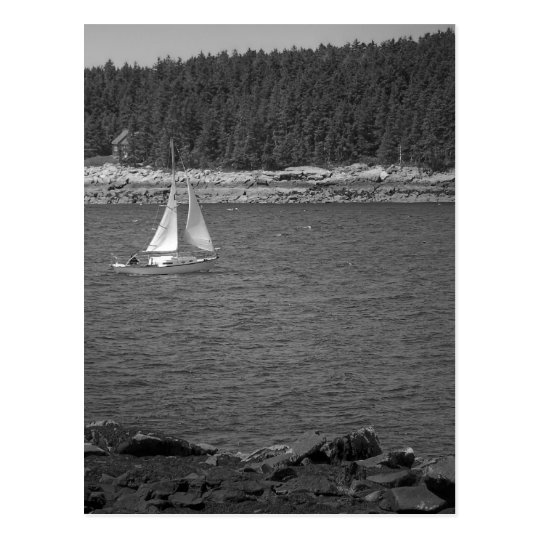 Maine_Black+White_9 Postcard