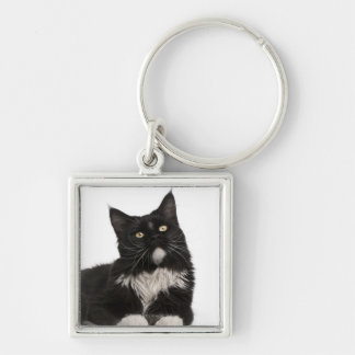 Maine Coon (15 months old) Key Ring