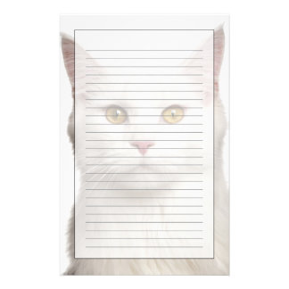 Maine Coon (8 months old) 2 Stationery