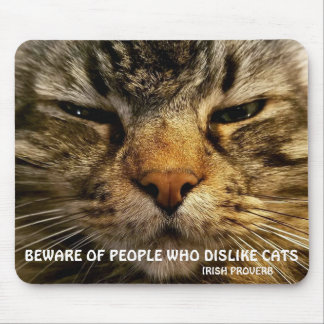 Maine Coon and Irish proverb Meme Mouse Mat