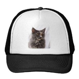 Maine Coon Cat 9Y825D-012 Trucker Hats