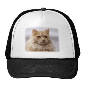 Maine Coon Cat 9Y825D-145 Mesh Hats