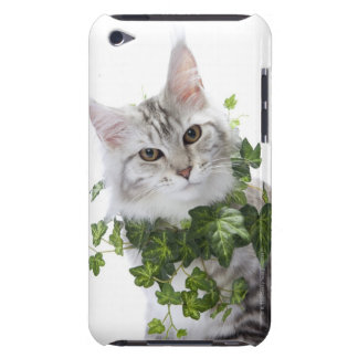 Maine Coon cat and ornament of ivy Case-Mate iPod Touch Case