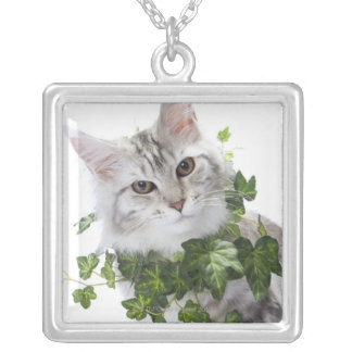 Maine Coon cat and ornament of ivy Silver Plated Necklace