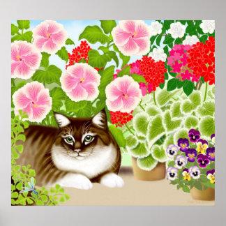 Maine Coon Cat in Garden Jungle Poster