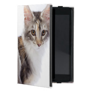 Maine Coon cat iPad Mini Cover