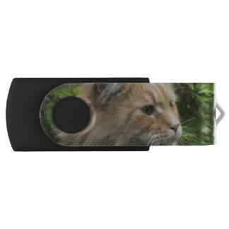Maine Coon Cat Kato USB Flash Drive