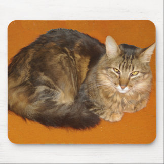 Maine Coon Cat Mouse Pad