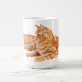 Maine Coon cat Basic White Mug