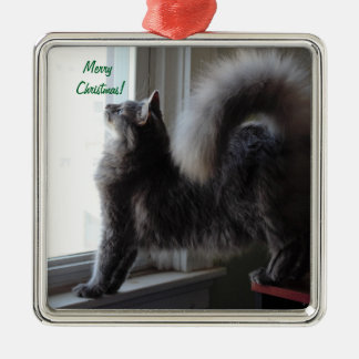 Maine Coon Cat Photo Christmas Ornament