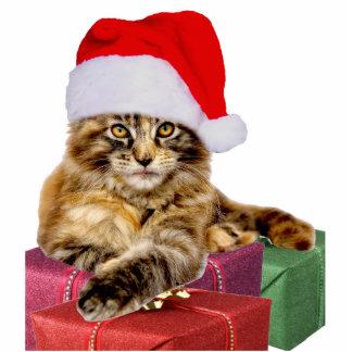 "Maine Coon Cat Santa & Gifts 2""x3"" Ornament Cutout Photo Sculpture Decoration"
