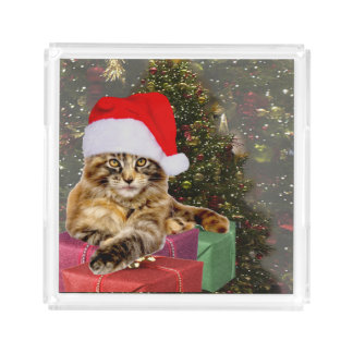 Maine Coon Cat Santa & Gifts Christmas Tree Behind Acrylic Tray