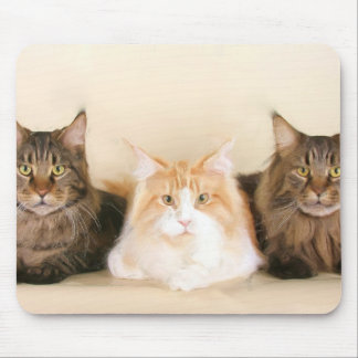 Maine coon Cats Mousepad