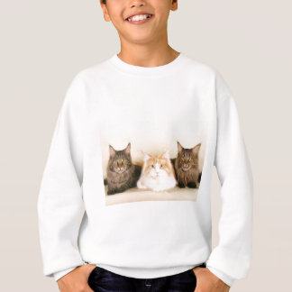 Maine coon Cats Sweatshirt