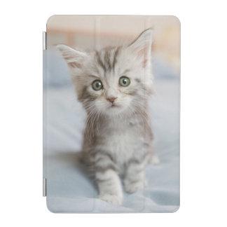 Maine Coon Kitten iPad Mini Cover
