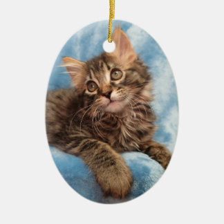 Maine Coon Kitten Ornament