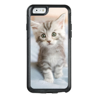 Maine Coon Kitten OtterBox iPhone 6/6s Case