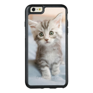 Maine Coon Kitten Sitting On Bed OtterBox iPhone 6/6s Plus Case