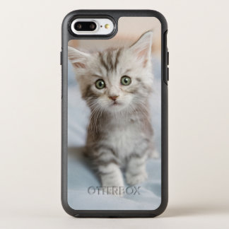Maine Coon Kitten Sitting On Bed OtterBox Symmetry iPhone 8 Plus/7 Plus Case