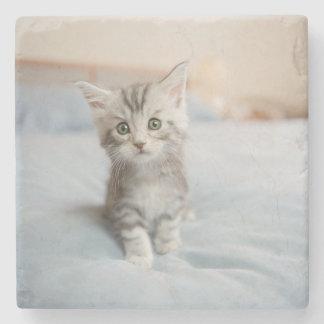 Maine Coon Kitten Sitting On Bed Stone Beverage Coaster