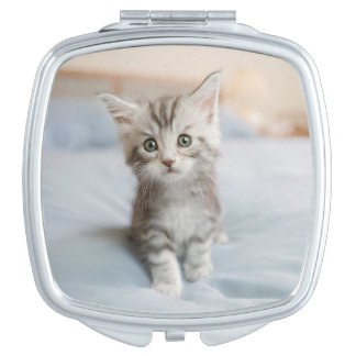 Maine Coon Kitten Sitting On Bed Vanity Mirrors