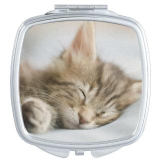 Maine Coon Kitten Sleeping Vanity Mirror