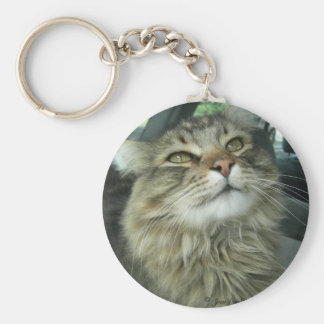 Maine Coon kitty Key Ring