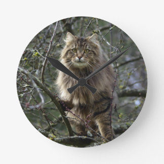 Maine Coon Long-hair Tabby Cat Animal Pet Clock