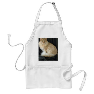 Maine Coon, red shaded Apron