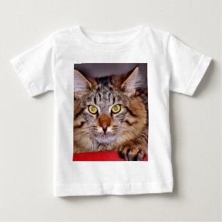 Maine-Coone Cat Baby T-Shirt