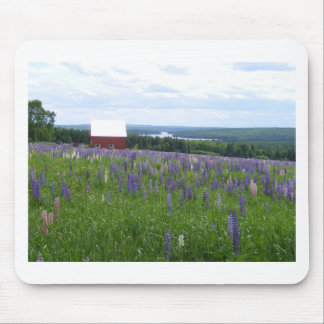 Maine Lupines Field Stockholm, ME Mouse Mat