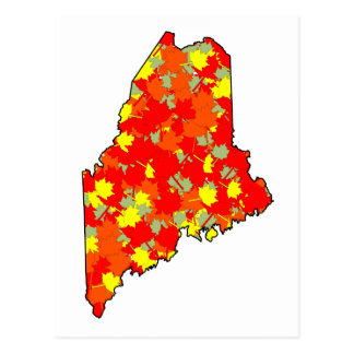 Maine Maple Postcard