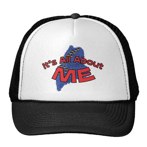 Maine ME US State Motto ~ It's All About ME Hats
