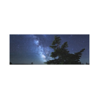 Maine Night Sky Canvas Print