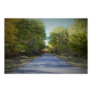 Maine Roadway with Trees Poster