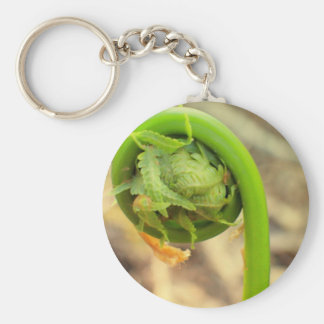 Maine Spring Key Ring