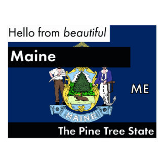 Maine The Pine Tree State Postcard