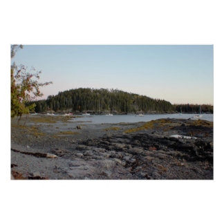 Maine Waterscape with Trees Poster