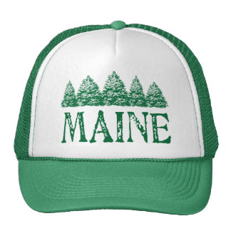 Maine Winter Evergreeens Cap