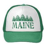 Maine Winter Evergreeens Hat