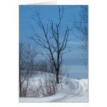 Maine Winter Greeting Cards
