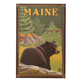 MaineBlack Bear in Forest Wood Print