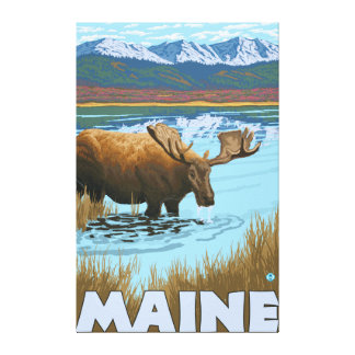 MaineMoose Drinking in Lake Gallery Wrap Canvas