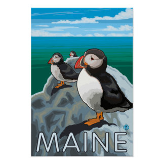 MainePuffins Scene Poster