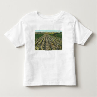 MaineView of a Potato Farm in Maine Toddler T-Shirt