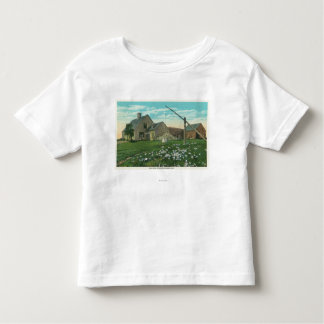 MaineView of an Old New England Homestead Toddler T-Shirt
