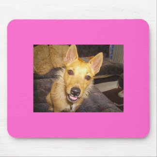 'Maisie' The Jack Russell Mouse Mat