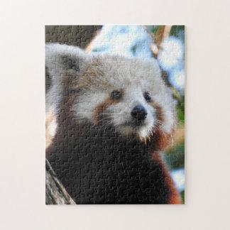 Maiya The Red Panda Jigsaw Puzzle