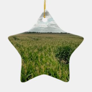 Maize maze christmas ornament
