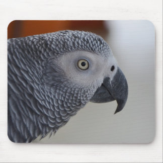 Majestic African Grey Parrot Mouse Mat